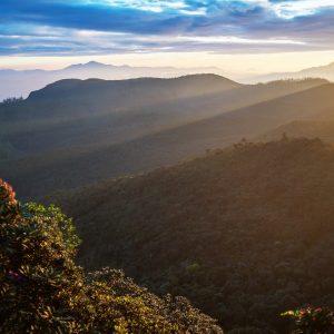 Mountain In Sri Lanka